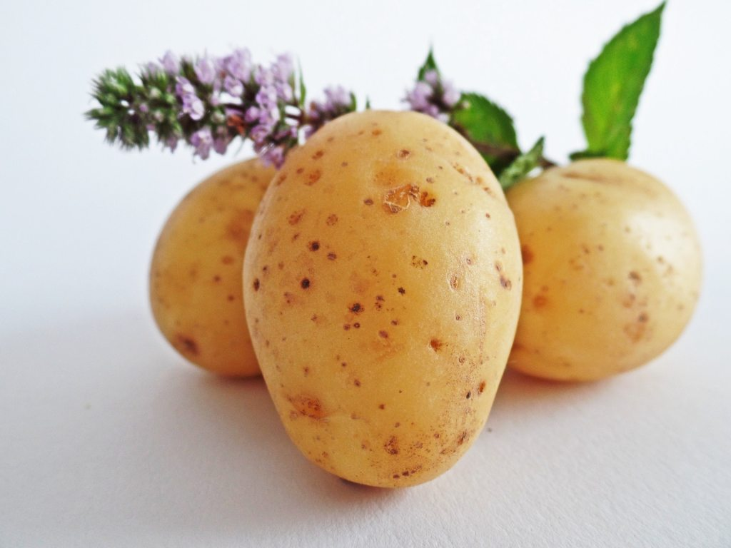 potatoes-vegetables-field-eat-51157